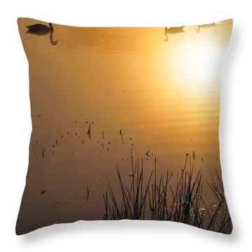 Sunrise Swim Throw Pillow by Catherine Reusch Daley