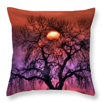 Sunrise Through The Foggy Tree Throw Pillow by Scott Mahon