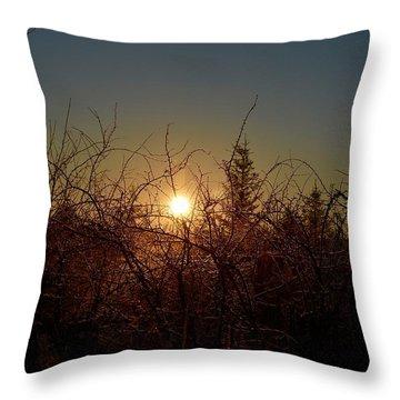 Sunrise Thru The Brush Throw Pillow