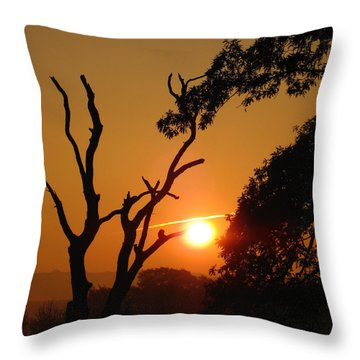 Sunrise Trees Throw Pillow by RKAB Works