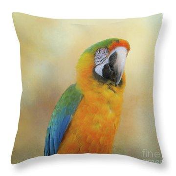 Sunrise Throw Pillow by Victoria Harrington