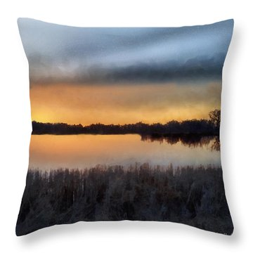 Sunrise On A Frosty Marsh Throw Pillow by RC deWinter