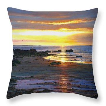 Sunscape Throw Pillow by Bruce Dumas