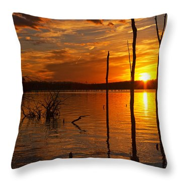 Throw Pillow featuring the photograph sunset @ Reservoir by Angel Cher