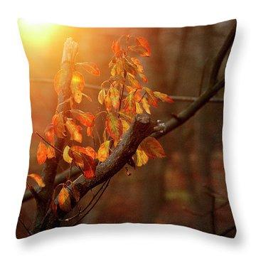 Sunset #8 Throw Pillow