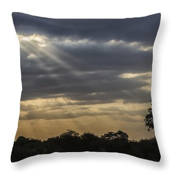 Sunset Africa 2 Throw Pillow by Kathy Adams Clark