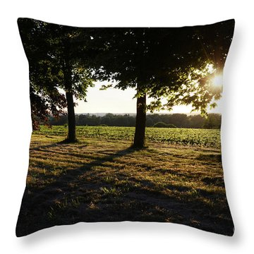 Sunset Along Elgin Mills Road-2 Throw Pillow