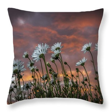 Sunset And Daisies Throw Pillow