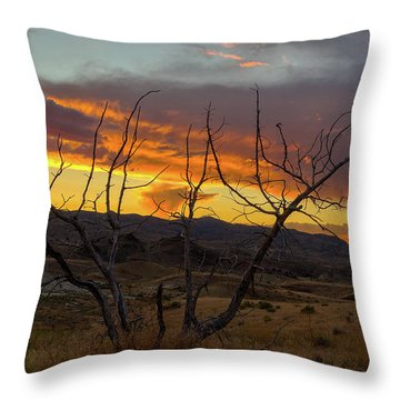 Sunset And Petrified Tree Throw Pillow by David Gn
