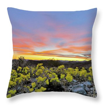 Sunset And Primrose Throw Pillow by Michele Penner