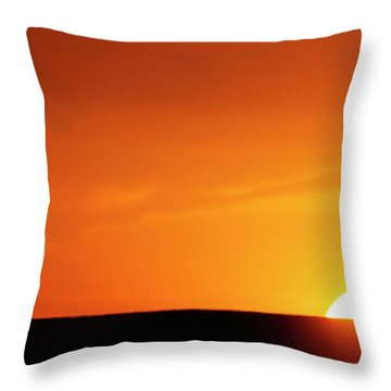 Sunset And Tree -01 Throw Pillow