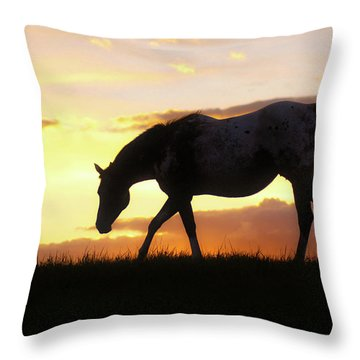 Sunset Appy Throw Pillow