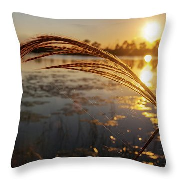 Throw Pillow featuring the photograph Sunset At Gator Hole 2 by Arthur Dodd