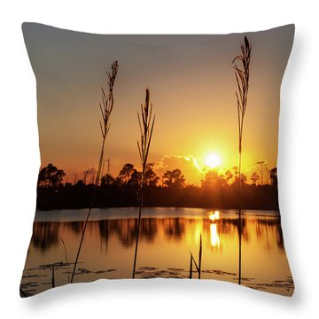 Throw Pillow featuring the photograph Sunset At Gator Hole 3 by Arthur Dodd