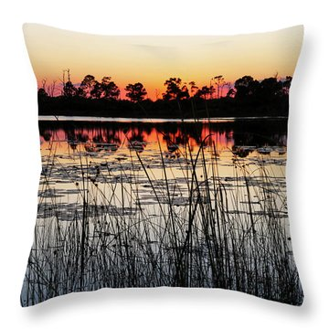 Throw Pillow featuring the photograph Sunset At Gator Hole by Arthur Dodd