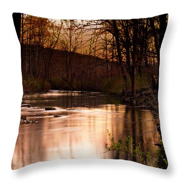 Sunset At King's River Throw Pillow by Tamyra Ayles