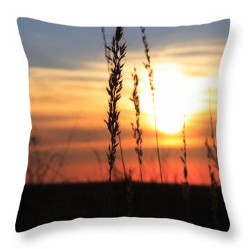 Sunset At Monument Hill Throw Pillow by Toni Hopper