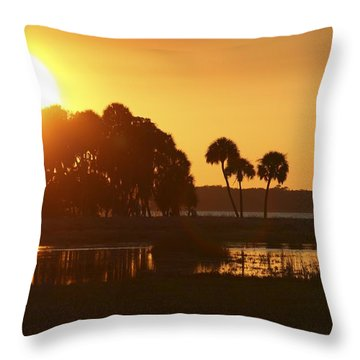 Sunset At Myakka River State Park In Florida, Usa Throw Pillow