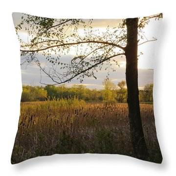 Sunset At Scuppernong II Throw Pillow by Kimberly Mackowski