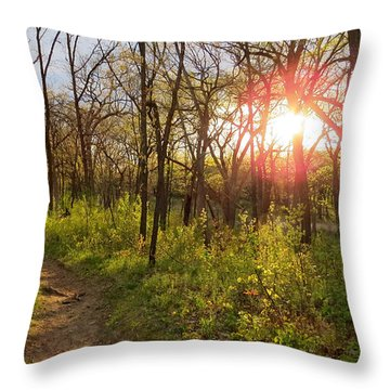 Sunset At Scuppernong Throw Pillow by Kimberly Mackowski