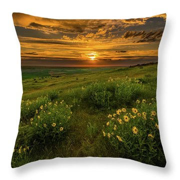 Sunset At Steptoe Butte Throw Pillow
