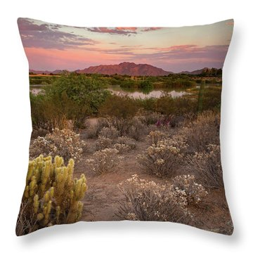 Sunset At The Oasis Throw Pillow by Sue Cullumber