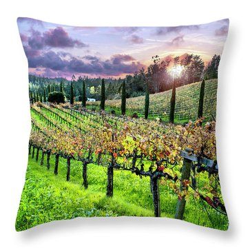Sunset At The Palmers Throw Pillow