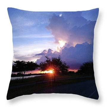 Throw Pillow featuring the photograph Sunset At The Park In Miami Florida by Patricia Awapara