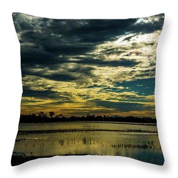 Sunset At The Wetlands Throw Pillow