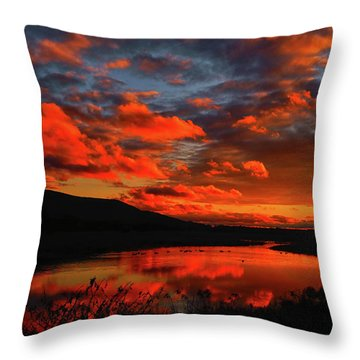 Sunset At Wallkill River National Wildlife Refuge Throw Pillow by Raymond Salani III
