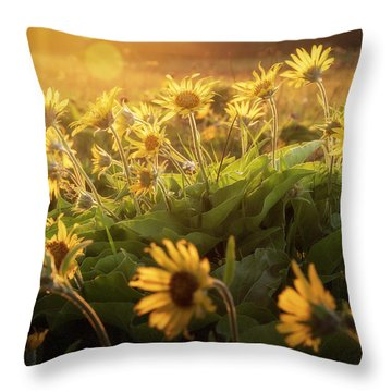 Sunset Balsam Throw Pillow