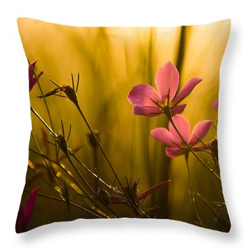 Sunset Beauties Throw Pillow by Parker Cunningham