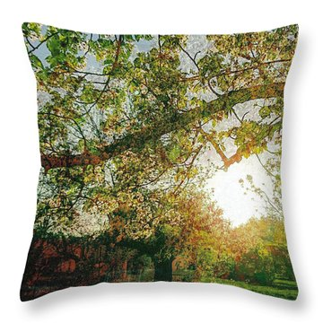 Throw Pillow featuring the photograph Sunset  by Bee-Bee Deigner