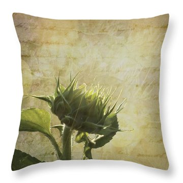 Throw Pillow featuring the photograph Sunset Beginnings by Melinda Ledsome