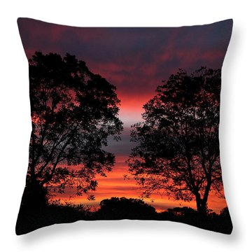 Sunset Behind Two Trees Throw Pillow