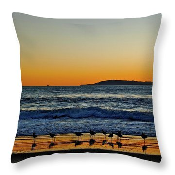 Sunset Bird Reflections Throw Pillow