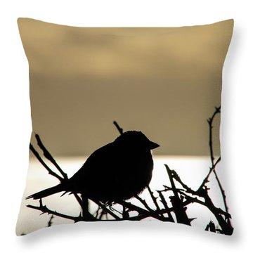 Sunset Bird Silhouette Throw Pillow