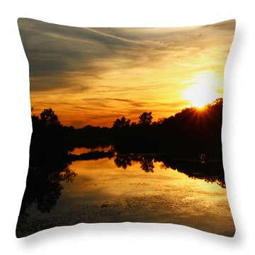 Sunset Bliss Throw Pillow by Robert Carey