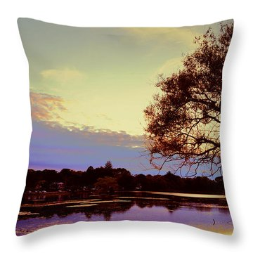 Sunset By The Pond Throw Pillow