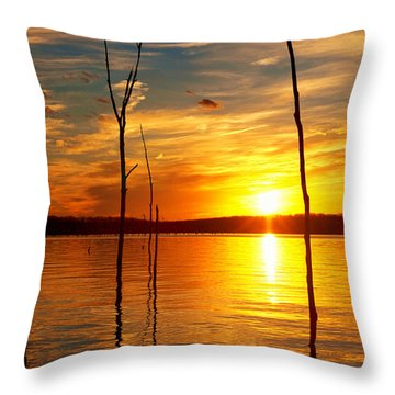 Throw Pillow featuring the photograph Sunset By The Water by Angel Cher
