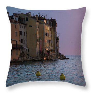 Sunset Colors Throw Pillow by Rae Tucker