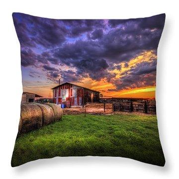 Sunset Dairy Throw Pillow