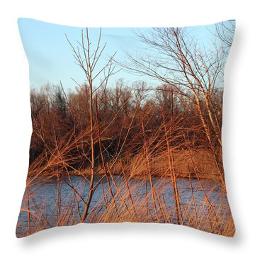 Sunset Field Over Water Throw Pillow