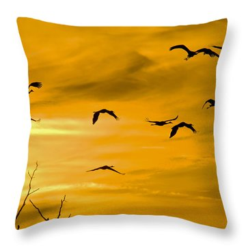 Throw Pillow featuring the photograph Sunset Fliers by Wanda Krack