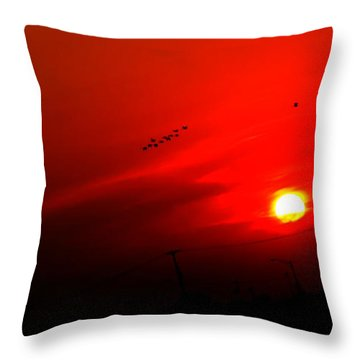 Sunset Geese Leaving Disappearing City - 0814  Throw Pillow