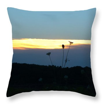Throw Pillow featuring the digital art Sunset Gold Stripe Queen Anne by Jana Russon