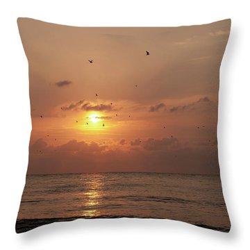 Sunset Florida Throw Pillow