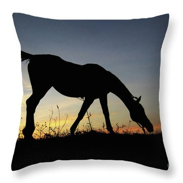 Sunset Horse Throw Pillow