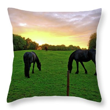 Sunset Horses Throw Pillow