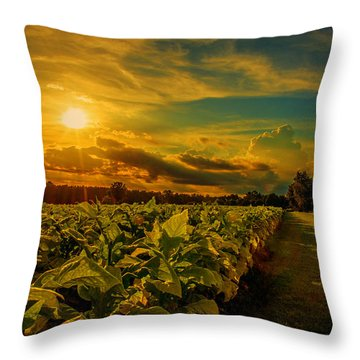 Throw Pillow featuring the photograph Sunset In A North Carolina Tobacco Field  by John Harding